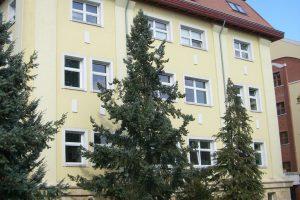 semmelweis kórház